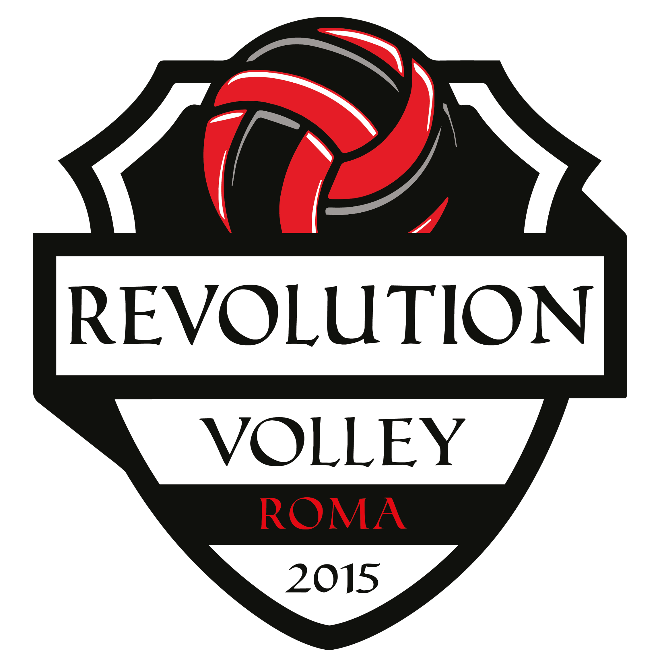 RevolutionVolley